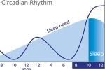 circadian-2-F